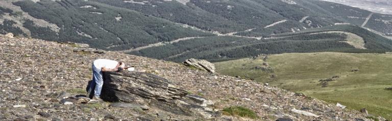 Panorama_sin_título2