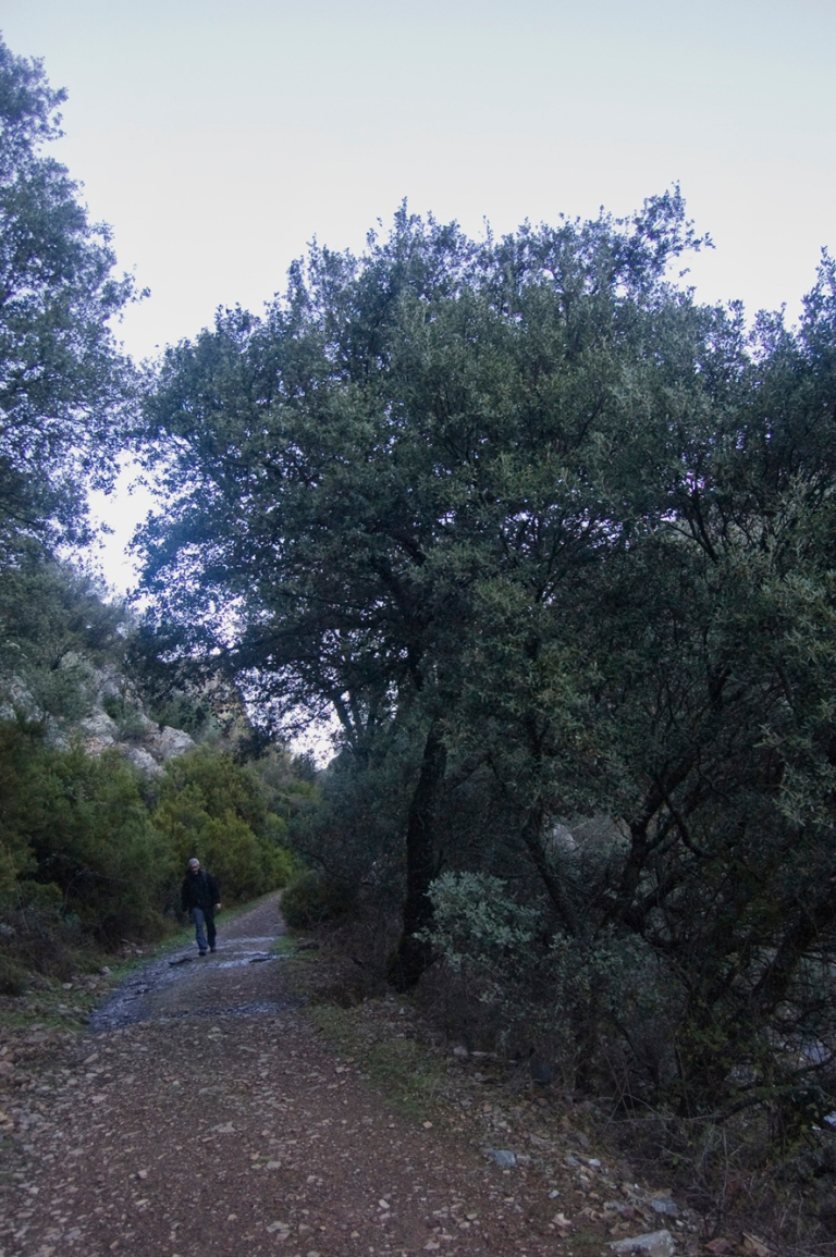 05122011-ROCIGALGO_TOLEDO-6