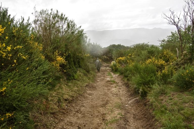 20120526_techos galicia_0095 copia